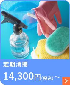 定期清掃 6,600円(税込)~