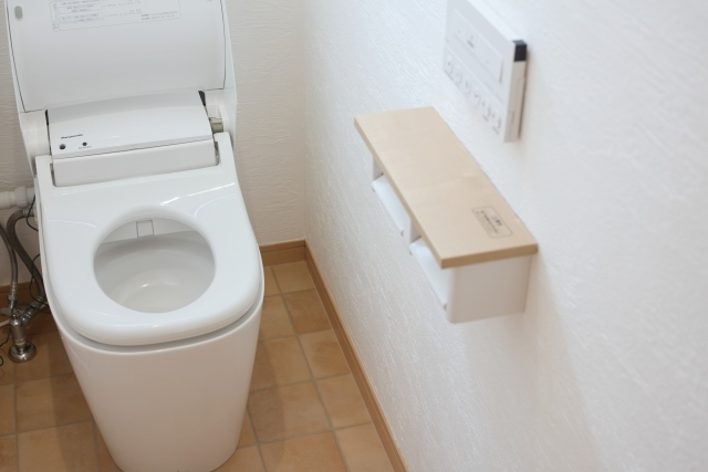トイレの汚れにも種類がある